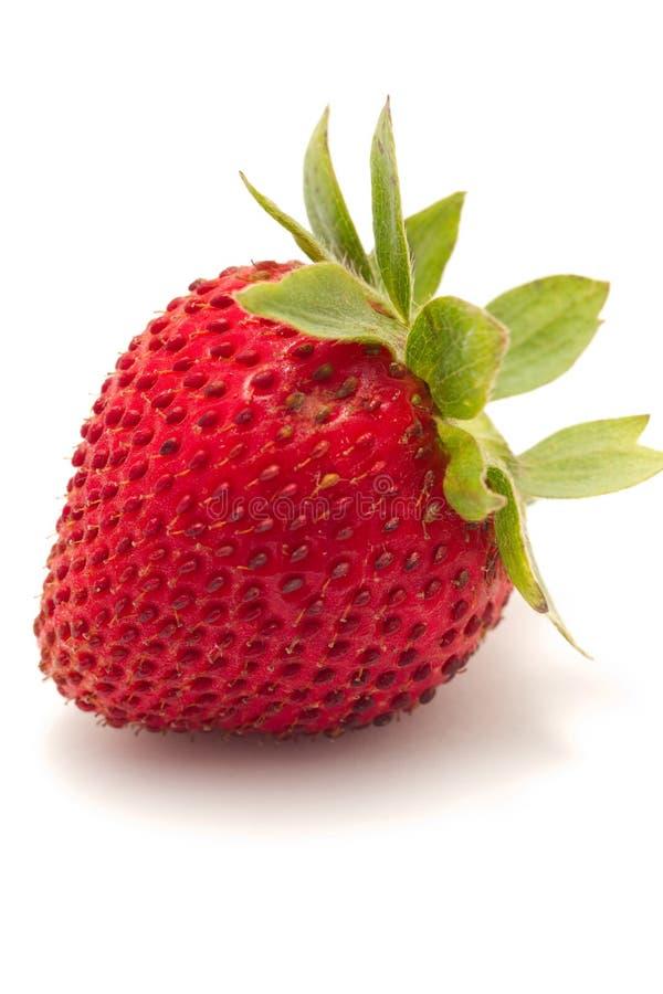 Free Strawberry Stock Image - 14715001