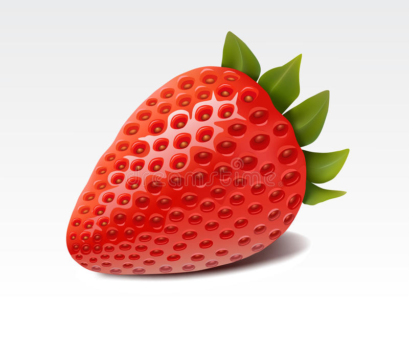 Strawberry. Ripe strawberry isolated on white