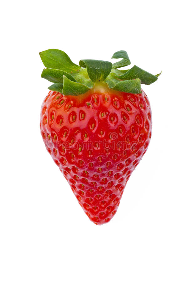 Download Strawberry stock image. Image of strawberries, free, real - 23631465