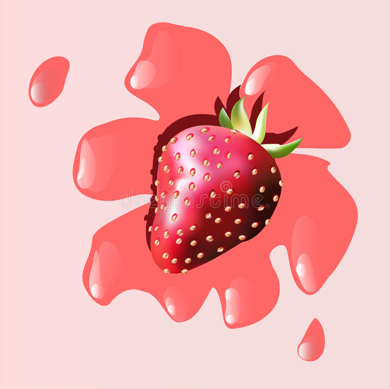Download Strawberry stock vector. Image of background, berry, seasoning - 24868132