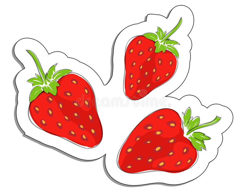 Download Strawberry stock vector. Illustration of nature, painting - 27954320