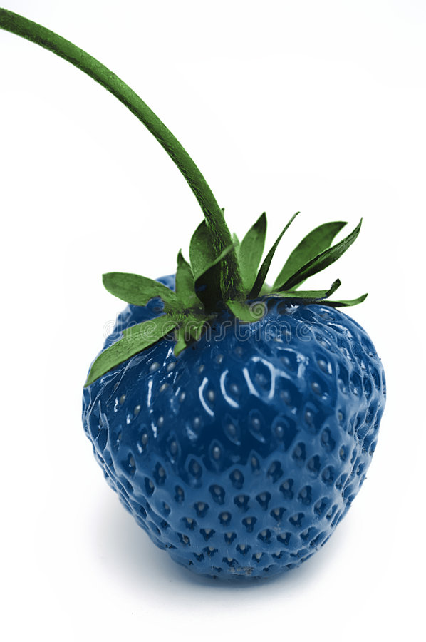 Strawberry. Blue colorised strawberry on white isolated royalty free stock photos