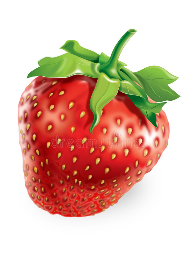 Strawberry. Ripe strawberry. Raster picture by a large plan stock illustration