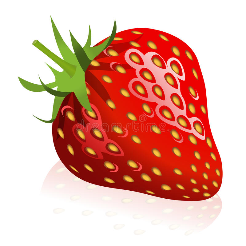 Download Strawberry stock vector. Image of clip, food, fruit, clipart - 9777907