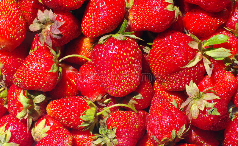 Strawberry.background royalty free stock photos