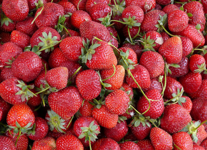 Download Strawberry background stock image. Image of ecology, food - 17166879