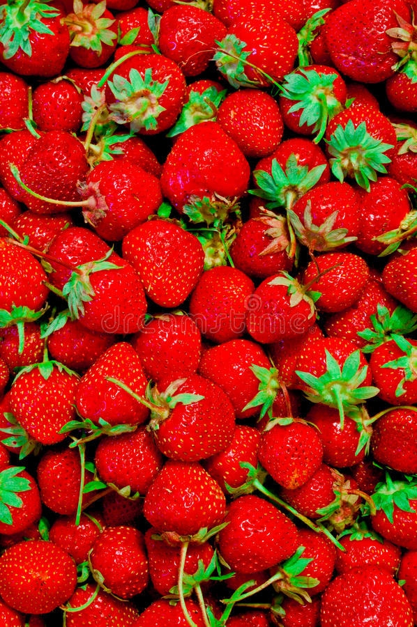 Download Strawberry background stock image. Image of vegetarian - 39504817