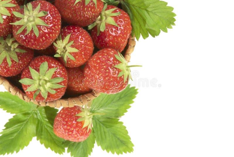 Strawberry in  basket.