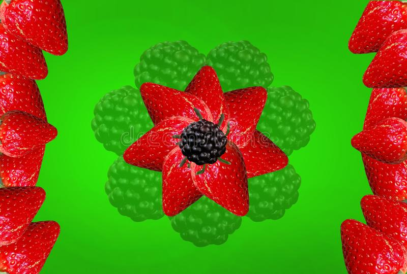 Strawberry blackberry flower on a green background for printing on a glass table. Vector clipart. Author`s work royalty free stock image
