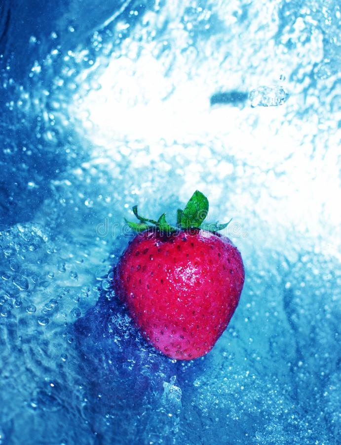 Strawberry in clear water stock photography
