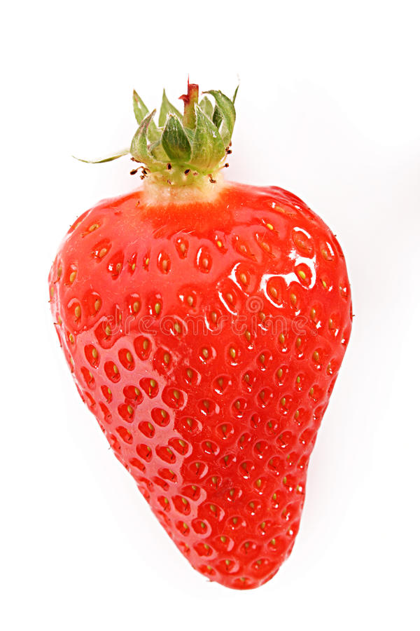 Strawberry closeup isolated stock photography