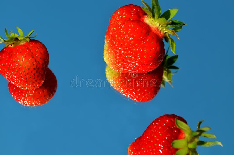 Strawberry closeup reflected in the mirror against the sky royalty free stock photo