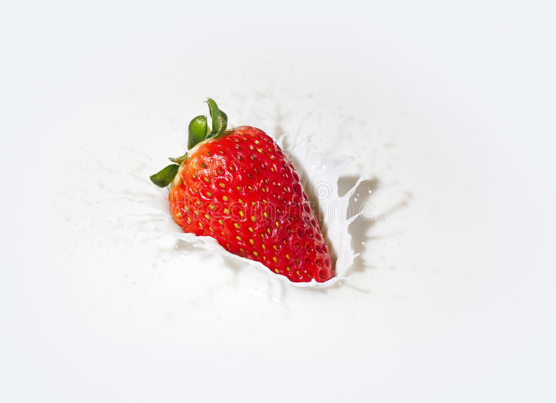 Strawberry in a cream royalty free stock photo