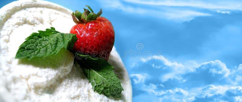 Strawberry Delite vector illustration