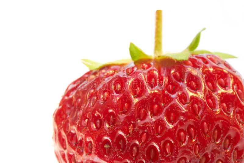 Strawberry extreme close-up stock image