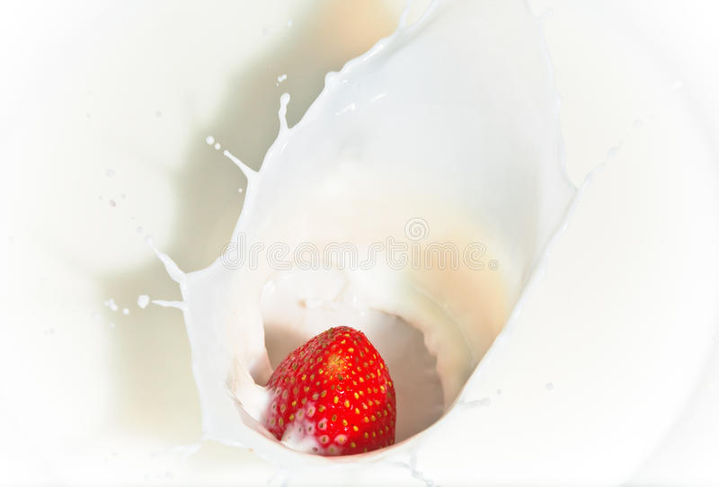 Download The Strawberry Falling In Milk Stock Image - Image: 17685097