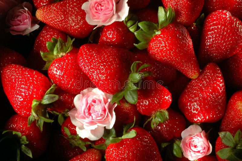 Download Strawberry fields forever stock photo. Image of ingredients - 931752