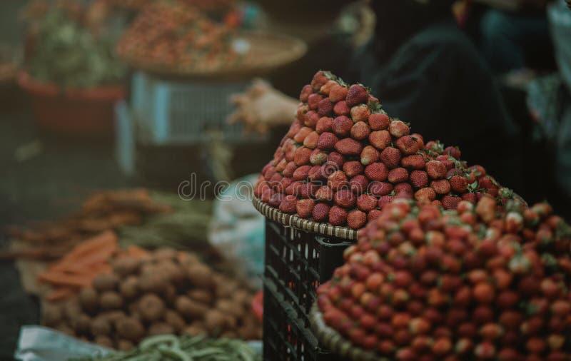 Strawberry Focus Photo stock photo
