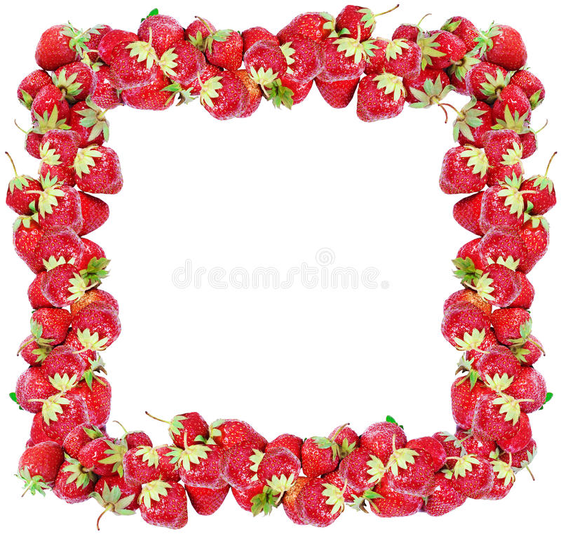 Strawberry frame stock image. Image of painting, outline - 25337451