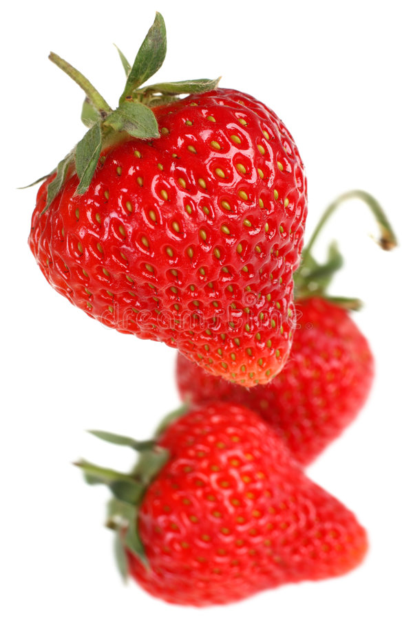 Strawberry fruit royalty free stock photo