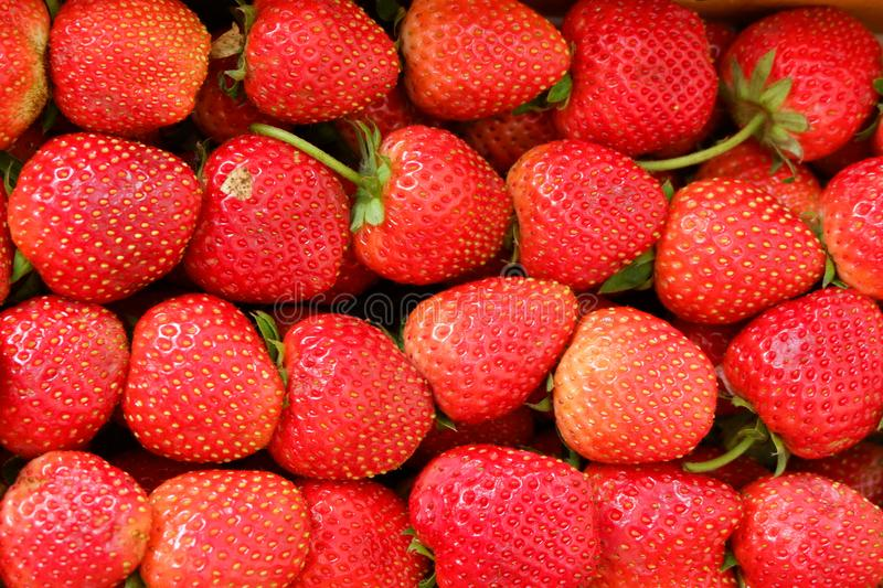 Strawberry fruit in Asia. Strawberry fruit food and drink in Asia royalty free stock photography