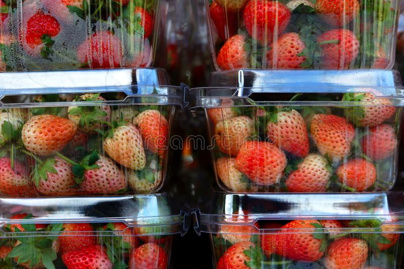 Strawberry fruit in Package. Strawberry fruit in box Package stock photo