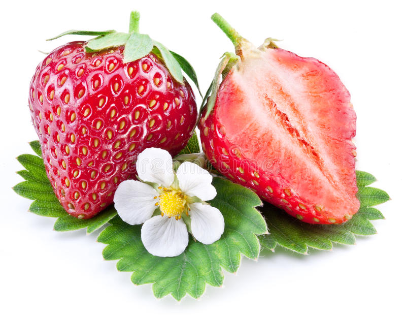 Strawberry fruit with slice and flower. Strawberry fruit with slice and flower isolated on a white royalty free stock images
