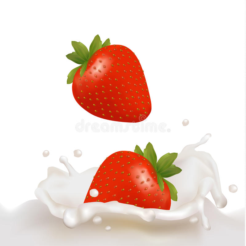 Strawberry fruits falling into the milky splash