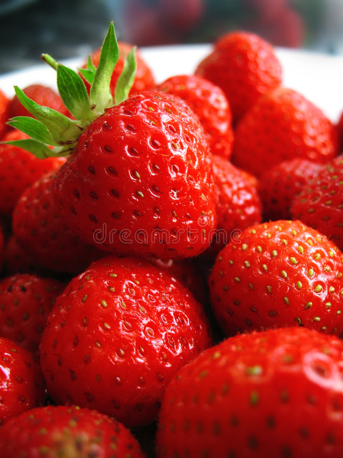 Strawberry from the garden royalty free stock photo