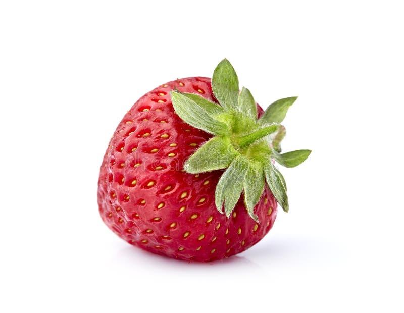 Strawberry Isolated on White Background royalty free stock photos