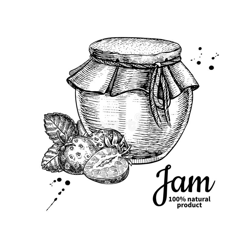 Strawberry jam glass jar vector drawing. Fruit Jelly and marmal. Ade. Hand drawn food illustration. Sketch style vintage objects for label, icon, packaging stock illustration