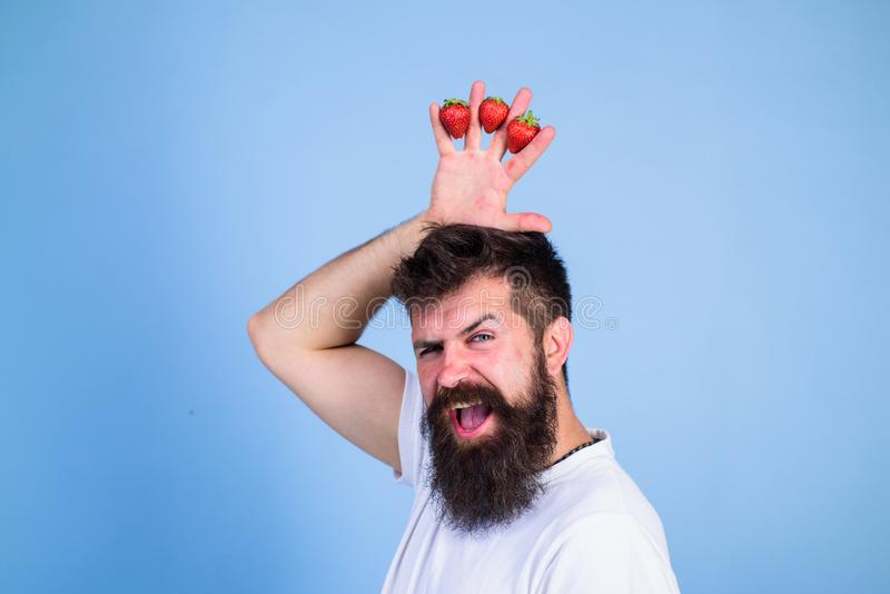 Strawberry king concept. Man bearded hipster holds hand with strawberries above head as crown. Hipster happy bearded. Face with crown. Man successful gardener stock photography
