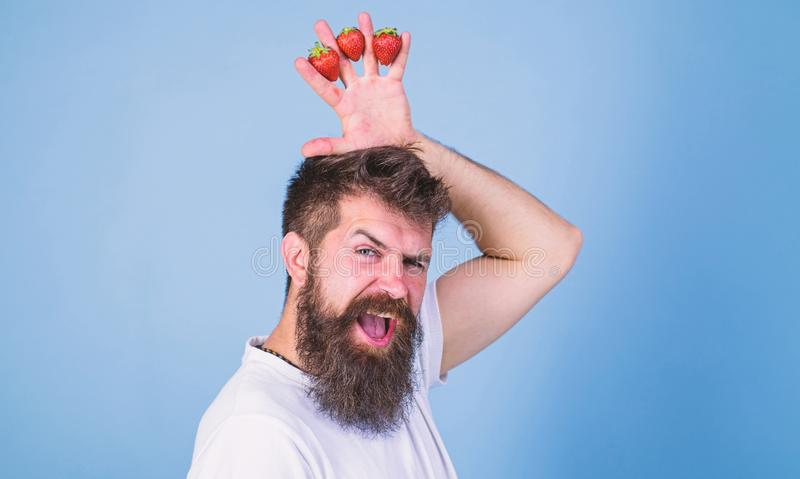 Strawberry king concept. Man bearded hipster holds hand with strawberries above head as crown. Man successful gardener. King of strawberry blue background royalty free stock photos