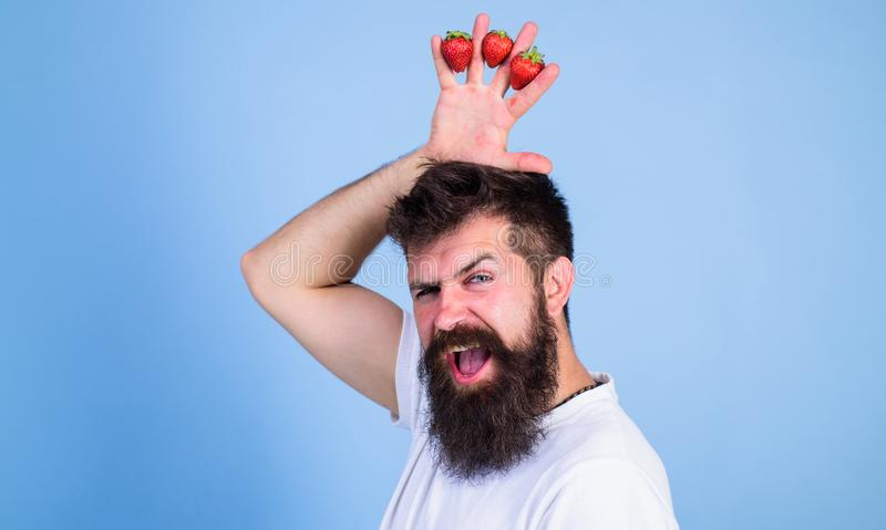 Strawberry king concept. Man bearded hipster holds hand with strawberries above head as crown. Man successful gardener. King of strawberry blue background stock photo