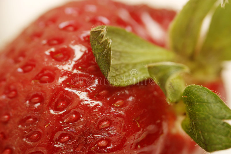 Download Strawberry Macro stock photo. Image of strength, healthy - 112750