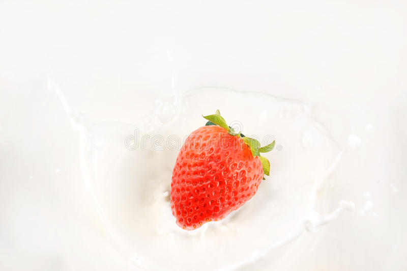 Download Strawberry in milk stock image. Image of backgrounds - 19884183
