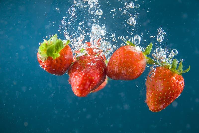 Strawberry, stock image