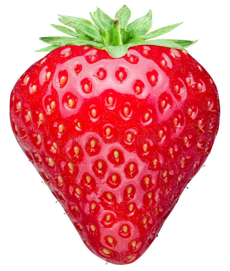 Free Strawberry On The White Background. Stock Photography - 74487652