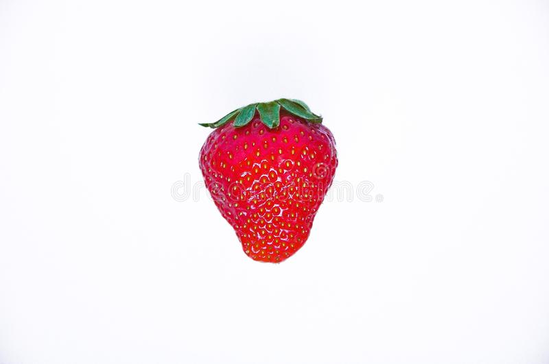 Strawberry one on a white background royalty free stock photos