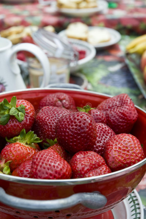 Strawberry Picnic. Strawberries on a picnic table in the summer time royalty free stock photo