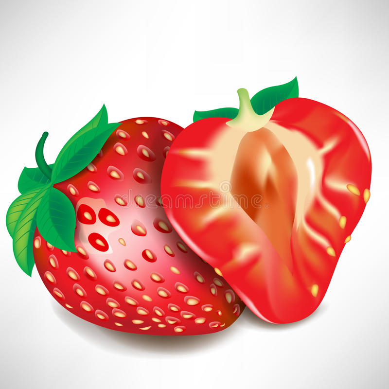 Download Strawberry Piece And Full Fruit Stock Vector - Image: 22096365