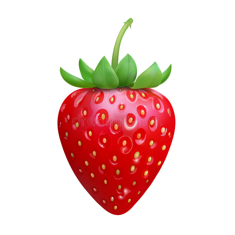 Strawberry Realistic icon vector isolated on white background.  stock illustration