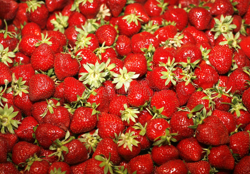 Strawberry. Red ripe strawberries close-up on market royalty free stock images