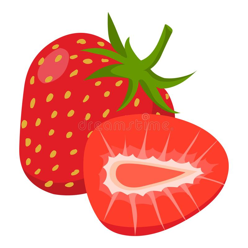 Strawberry vector.Fresh strawberry illustration. Vector isolated on white background royalty free illustration