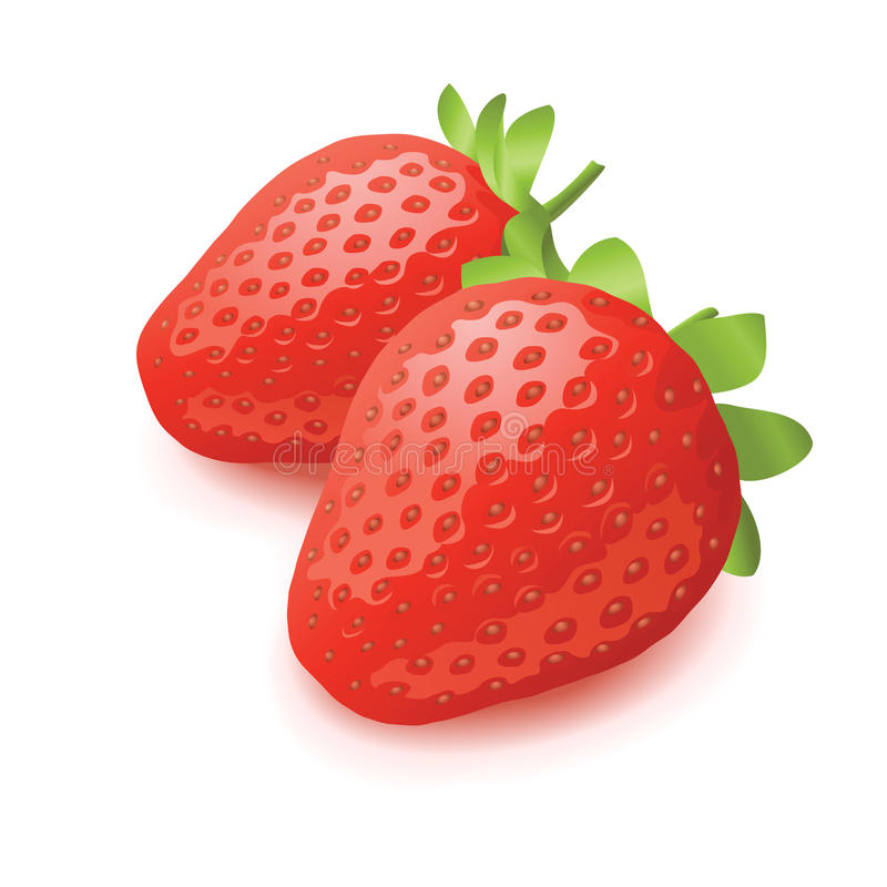 Download Strawberry Vector Illustration Stock Vector - Illustration of strawberry, close: 9416274