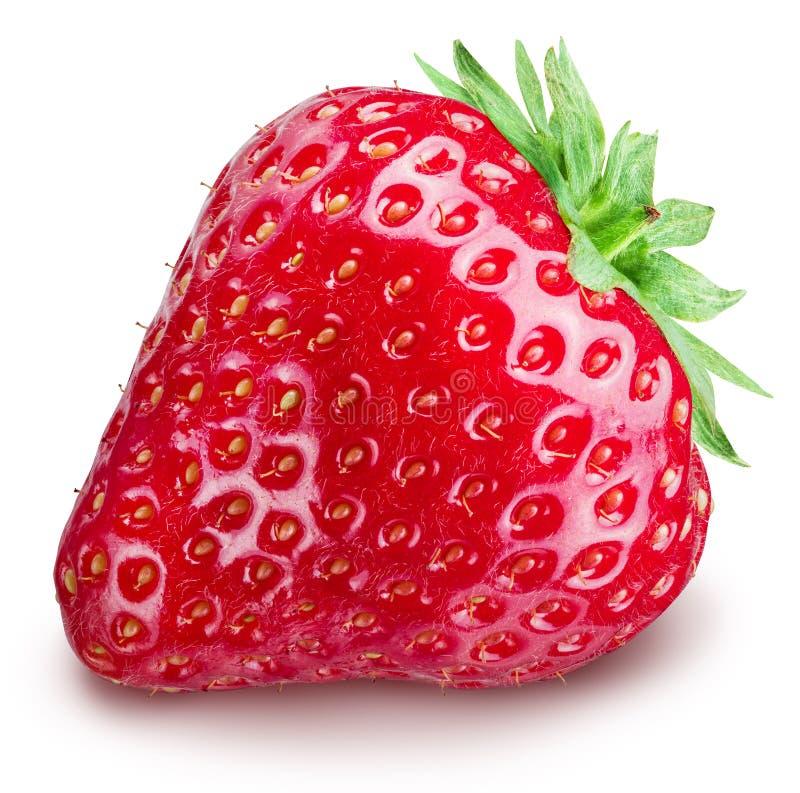 Strawberry on the white background. royalty free stock photo