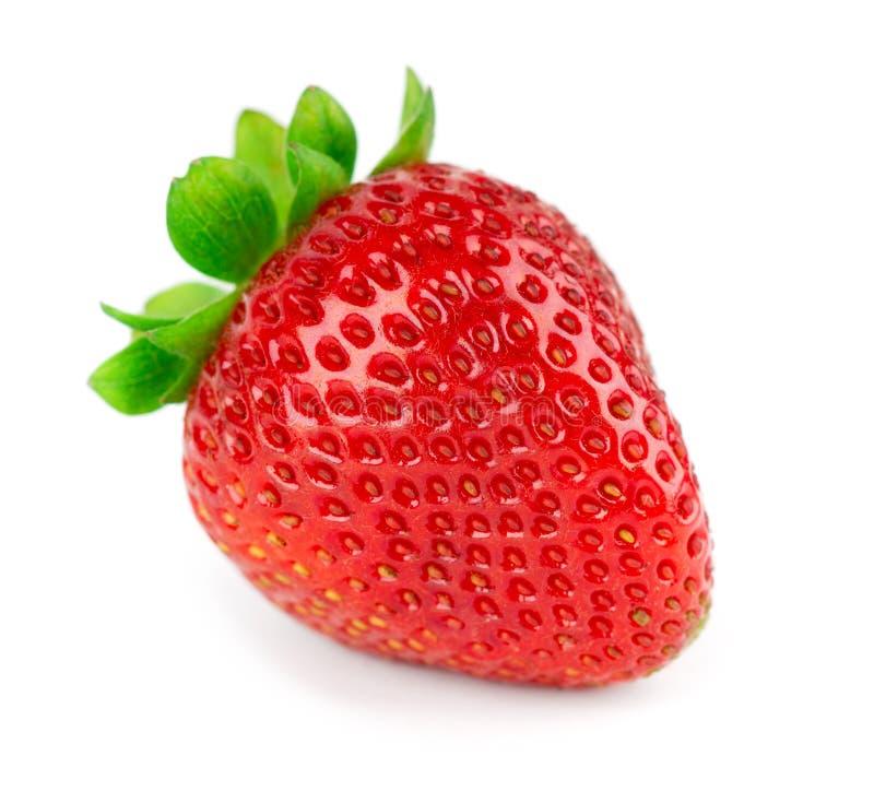 Strawberry on white background. Fresh sweet fruit closeup stock image