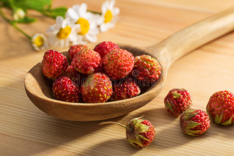 Strawberry in a wooden spoon. And daisy chain stock images