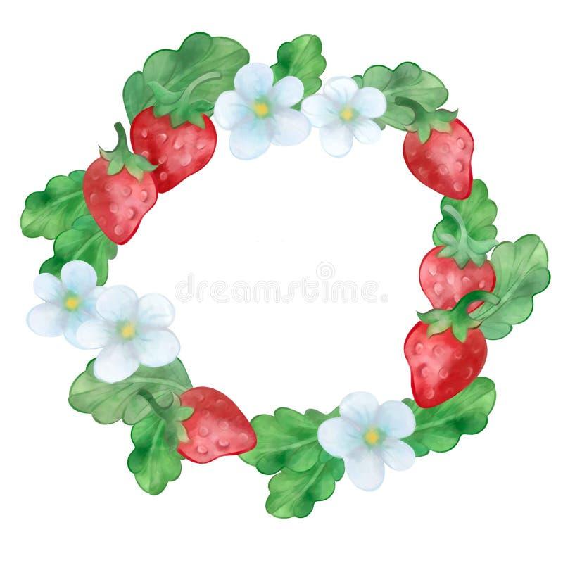 Strawberry wreath stock photos