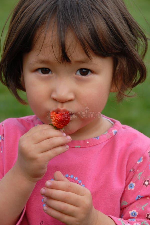 strawberry1 库存照片